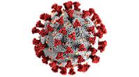 Foto coronavirus2
